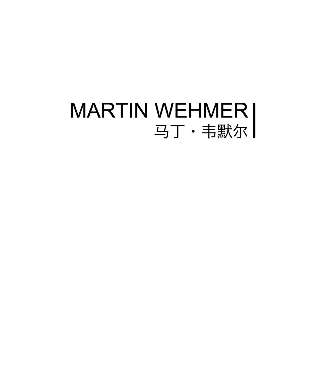 马丁•韦默尔 Martin Wehmer